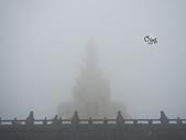 20141116峨嵋山:DSCN0485.JPG