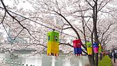 20180330-0410韓國賞櫻(下):20180407_103247.jpg
