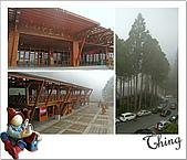 20100328-0329阿里山賞櫻:IMG_5925.JPG