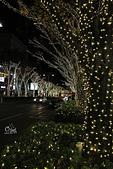 20161201-1206日本東京銀杏+河口湖富士山:IMG_7494.JPG