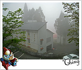 20100328-0329阿里山賞櫻:IMG_5943.JPG