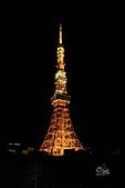 20161201-1206日本東京銀杏+河口湖富士山:IMG_7538.JPG