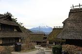 20161201-1206日本東京銀杏+河口湖富士山:IMG_7945.JPG