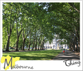 20101230-20110104 Melbourne:IMG_2679.JPG