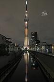 20191017-1023日本東京掃帚草:IMG_8965.JPG