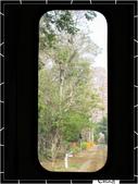 20080228-0301奮起湖阿里山:IMG_1676.jpg