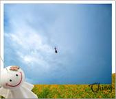 20090913-0915花蓮金針花之行 :IMG_7856.JPG