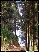 20080228-0301奮起湖阿里山:IMG_1746.jpg