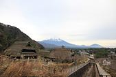 20161201-1206日本東京銀杏+河口湖富士山:IMG_7960.JPG