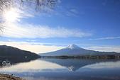 20161201-1206日本東京銀杏+河口湖富士山:IMG_8167.JPG