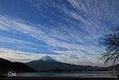 20161201-1206日本東京銀杏+河口湖富士山:IMG_8083.JPG