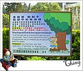 20100328-0329阿里山賞櫻:IMG_6632.JPG