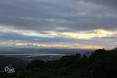 20130202陽明山櫻花:IMG_8090.JPG