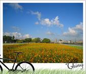 20081018單車-景美:IMG_6661_1.jpg