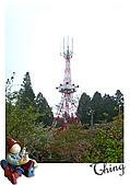 20100328-0329阿里山賞櫻:IMG_6756.JPG