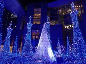 20171124-1128日本東京銀杏:PB240132.JPG