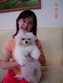 幼幼cherry:DSCN2203.JPG