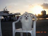 2008海洋博覽會:DSCN6761.JPG