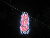 燈燦愛河幸福99:990216 168.jpg