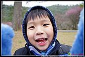 2011武陵農場:DSC06182P01.jpg