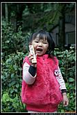 2011-02-03 鳩之澤:DSC07170P04.jpg