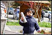 2011武陵農場:DSC06140P50.jpg