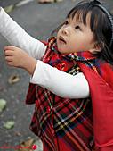 小妞外拍:DSC05713P11.jpg