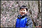 2011武陵農場:DSC06453P51.jpg
