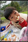 2011-02-03 鳩之澤:DSC07194P06.jpg