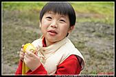 2011-02-03 鳩之澤:DSC07210P05.jpg