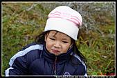 2011武陵農場:DSC06004P32.jpg