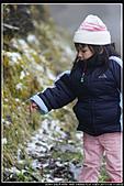 2011武陵農場:DSC05828P05.jpg