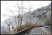 2011武陵農場:DSC05852P12.jpg