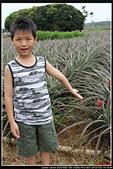 微笑天梯&溪頭:IMG_3701P01.jpg