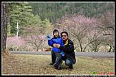 2011武陵農場:DSC06160P57.jpg