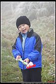 2011武陵農場:DSC06864P12.jpg