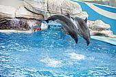 花蓮海洋公園:DSC01451.JPG