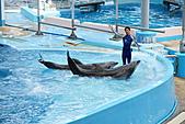 花蓮海洋公園:DSC01456.JPG