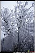 2011武陵農場:DSC06878P13.jpg