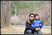 2011武陵農場:DSC06164P59.jpg