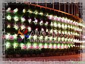 2010花博首部曲:DSC03656P28.jpg