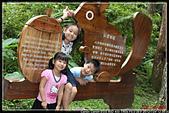 微笑天梯&溪頭:IMG_3900P07.jpg