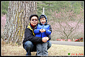 2011武陵農場:DSC06166P60.jpg