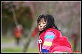 2011武陵農場:DSC06270P26.jpg