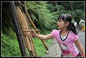 微笑天梯&溪頭:IMG_3965P09.jpg