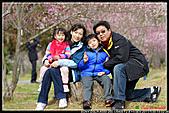 2011武陵農場:DSC06283P27.jpg