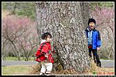 2011武陵農場:DSC06663P14.jpg