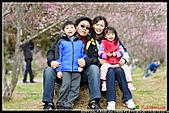 2011武陵農場:DSC06285P28.jpg