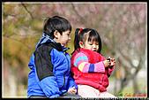 2011武陵農場:DSC06291P29.jpg