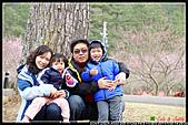 2011武陵農場:DSC06171P61.jpg